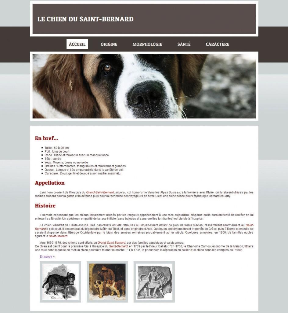 Page web - Dreamweaver